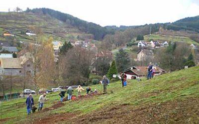 «Verte et Bleue»… La Broque, une commune «Libellule»