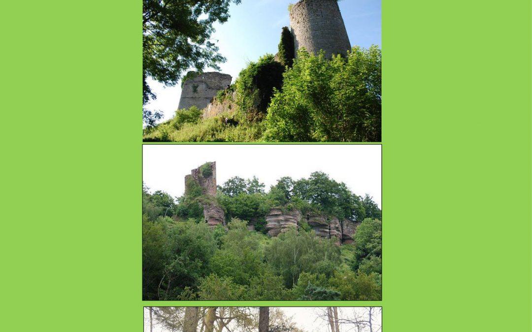 «La route des châteaux de Salm»